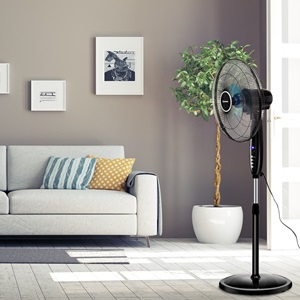 Best Choice Pedestal Fan